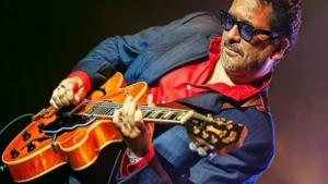 Mike Sponza, guitar